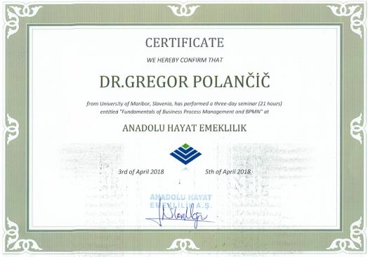 Istanbul_certificate